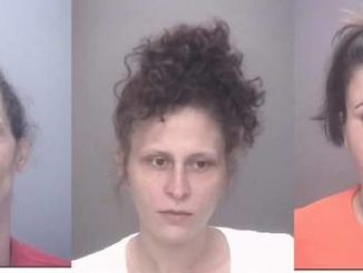 3 charged after search of Red Springs home