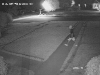 Police need help identifying car thieves