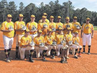 Lumberton Dixie Boys heading to the World Series