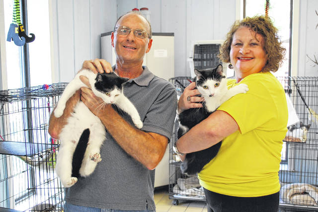Adoptions could pay off for RCHS