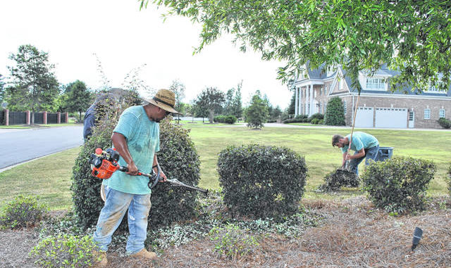 Steve Britt Lawn Care worker George Zuniga, left, trims hedges Wednesday afternoon in the Grande Oaks neighborhood of Lumberton as McKay Hall gathers trimmings to place in a trash receptacle. The workers endured afternoon temperatures of about 90 and high humidity while completing the job.                                  Jessica Horne | The Robesonian