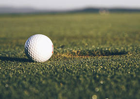 Robeson County Golf Championship final results