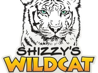 Shizzy's Wildcat Rescue seeks volunteers to help build enclosures