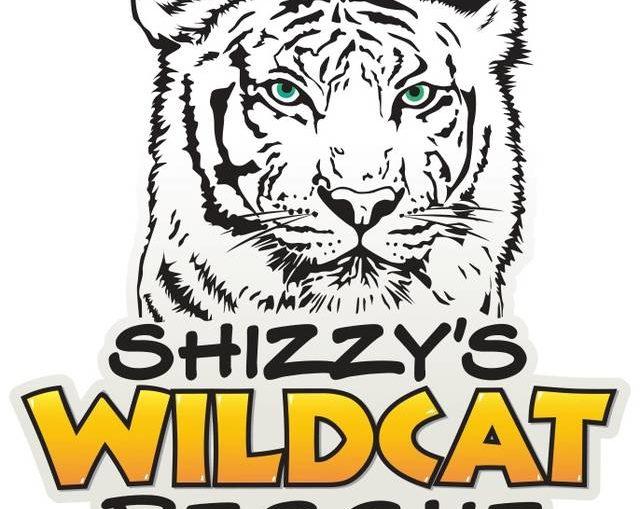 Shizzy's Wildcat Rescue seeks volunteers to help build enclosures